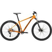 Trail 3 - Tangerine