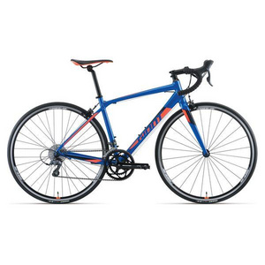 Giant Contend 2 2017