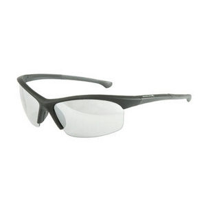 Stingray Glasses