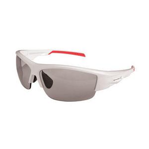Endura Brigg Glasses: