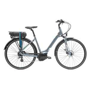 Entour E+2 Disc LDS 25km/h M Steel Grey