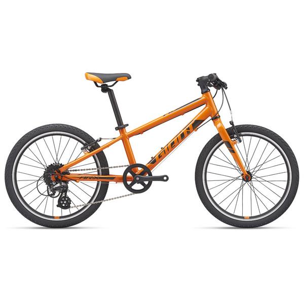 ARX 20 - Orange